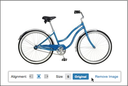 bike.png#asset:1330