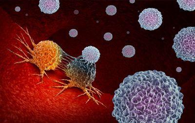 DDN Webinar: On Target: Enhancing Immunotherapies