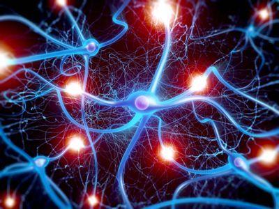 For neurogenesis choose…ayahuasca?