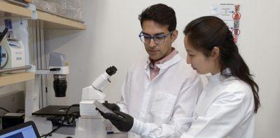 Choosing CRISPR in the fight against SARS-CoV-2