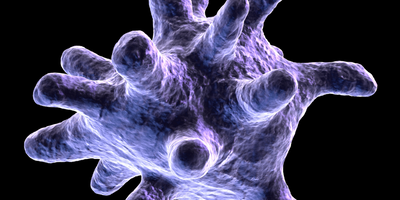 Braking macrophages