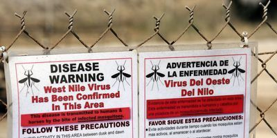 Risk maps could predict West Nile virus spread