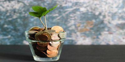In-vitro investment