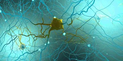 Focus Feature on Neuroscience: Preclinical progress on neurodegeneration