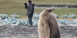 New study maps wildlife microbiota for human benefit