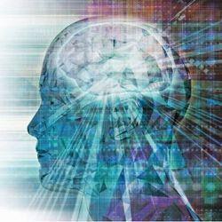 Meet a new alliance for neuroscience