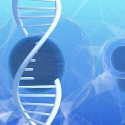 Gene-Edited Stem Cells for Disease and Drug Discovery