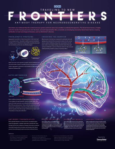 Infographic: Antibody Therapy for Neurodegenerative Diseases