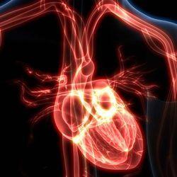 CRISPR advances cardiovascular disease research