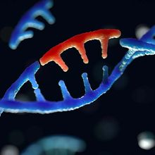 Harnessing cells' own RNA editing tools for new therapeutics