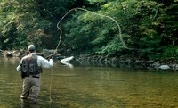 flyfishing in connecticut