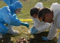 crime scene investigation degrees