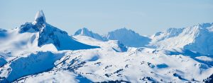 About Whistler