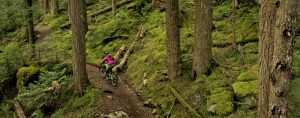 Whistler Summer Mountain Biking