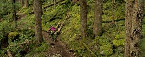 Whistler Summer Mountain Biking