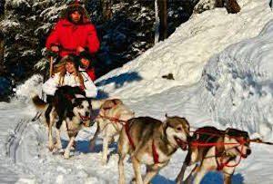 CWA Dog sledding