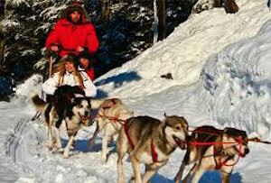 Dog Sledding & Snowmobiling