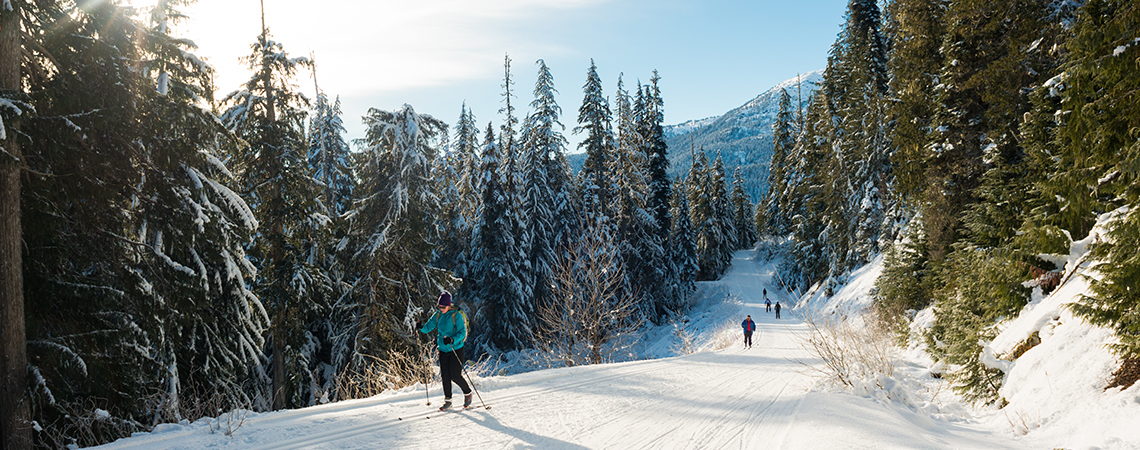 Cross-Country Skiing Whistler