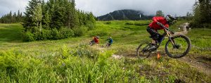 Whistler Mountain Bike Park Trails
