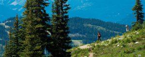 Whistler Hiking Summer Activities