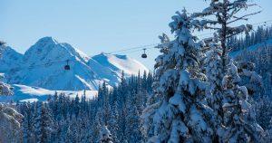 Whistler Platinum Mountain Statistics