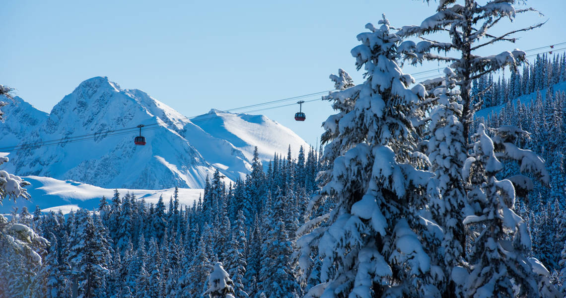 Whistler Platinum Privacy Policy