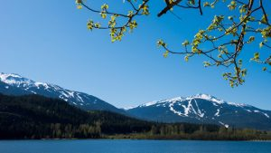 Why Book with Whistler Platinum