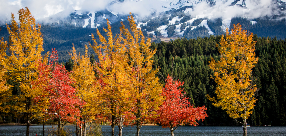 Autumn in Whistler brings vibrant colours to the mountains.