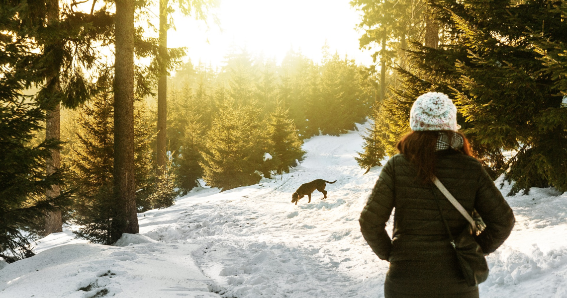 Pet-Friendly Whistler Accommodation