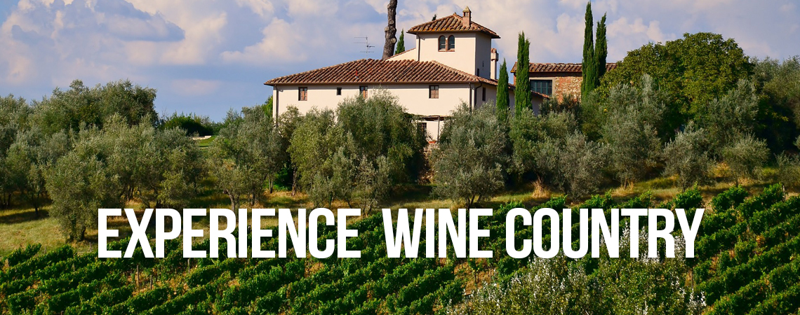 Experience California Wine Country
