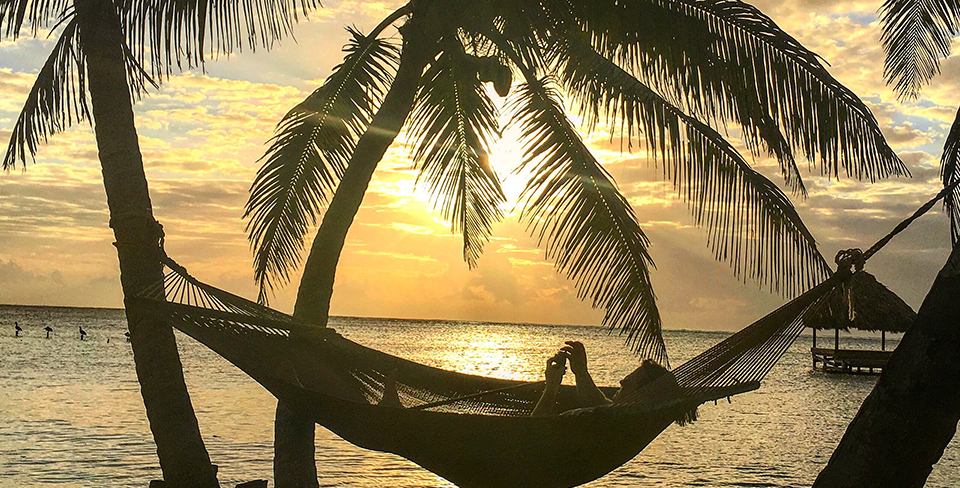 Blog-Full-Width-Image-960w-Belize-Sunset-Palm-Trees-Utopian