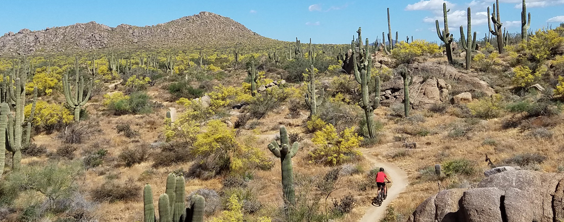 Scottsdale Activities Lodging with Utopian Luxury Vacation Homes