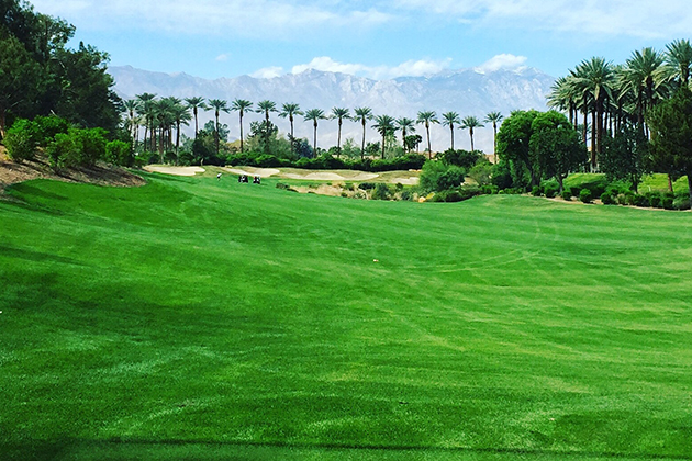 Promo-Tile-Palm-Springs-Golf-Course-Mountains-Utopian