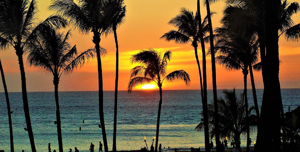 Blog-Full-Width-Image-960w-Maui-Beach-Sunset-Palm-Trees-Utopian