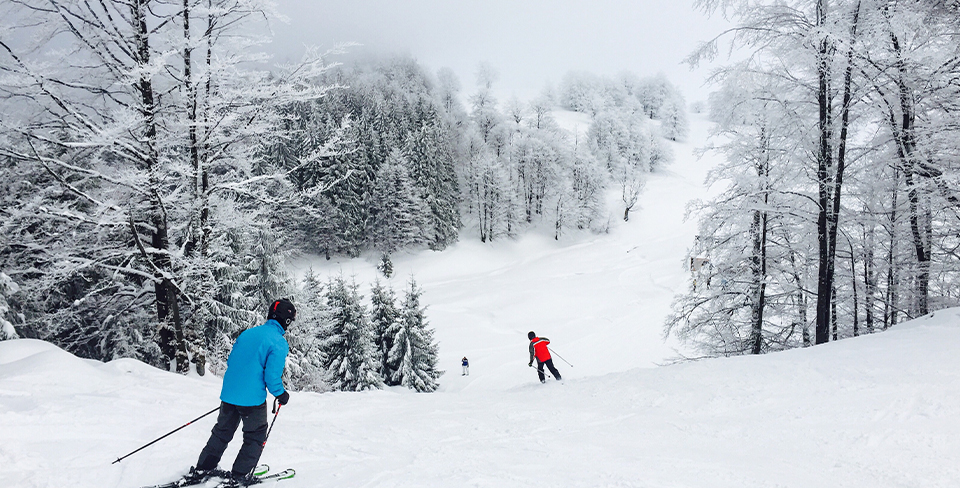 Blog-Full-Width-Image-960w-Skiers-Winter-Snow-Trees
