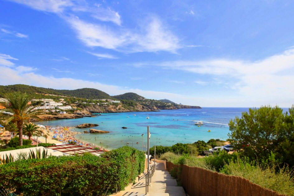 What area in Ibiza best suits you?