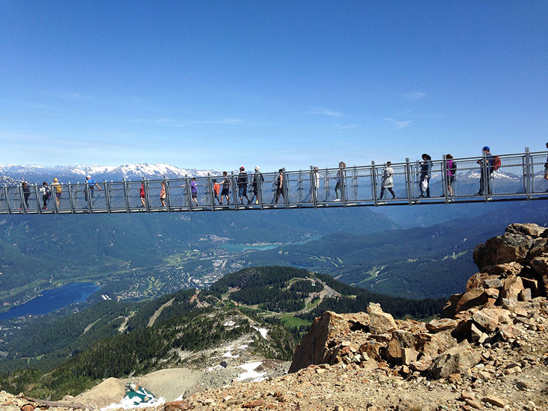 Whistler Suspension Bridge - Would You ?
