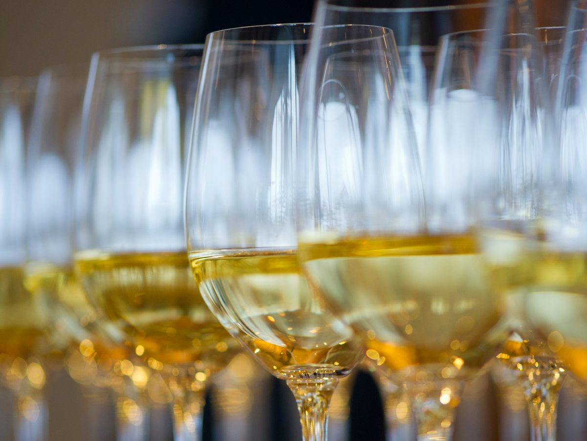 Glasses of white wine ready to be tasted.