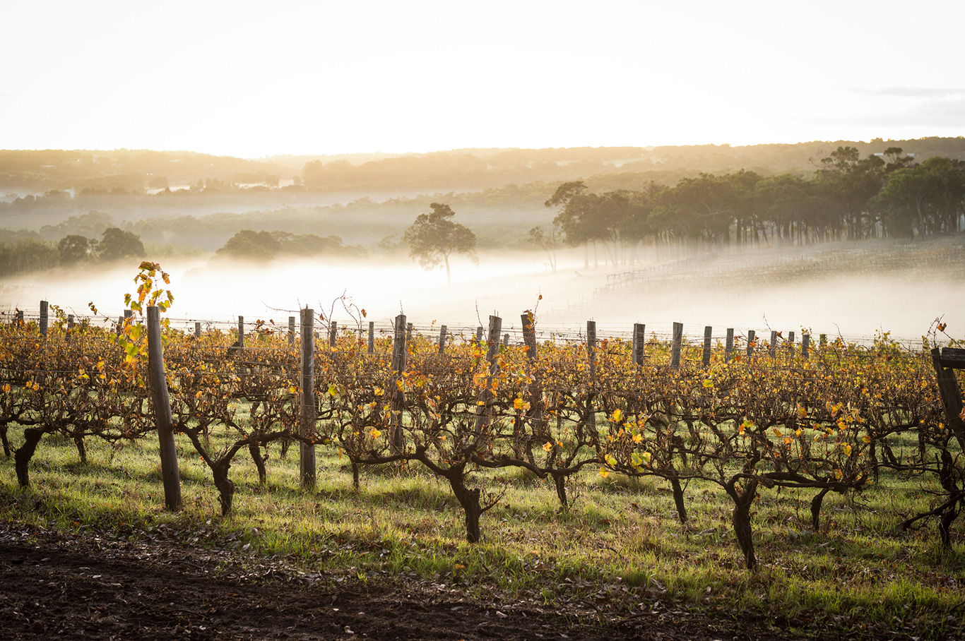The best cosy winter accommodation in the Margaret River Region