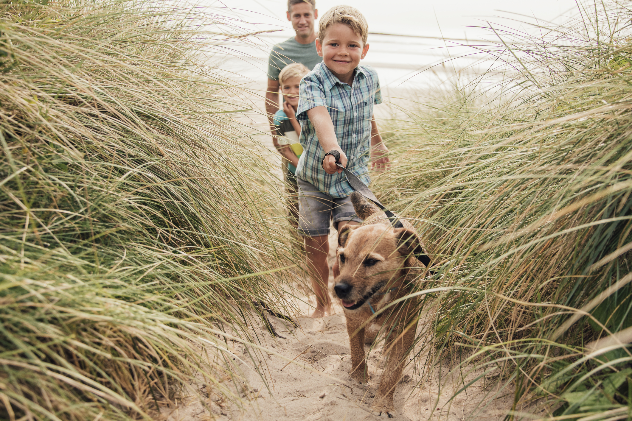 Top 5 Pet-Friendly Accommodation options in WA's South West