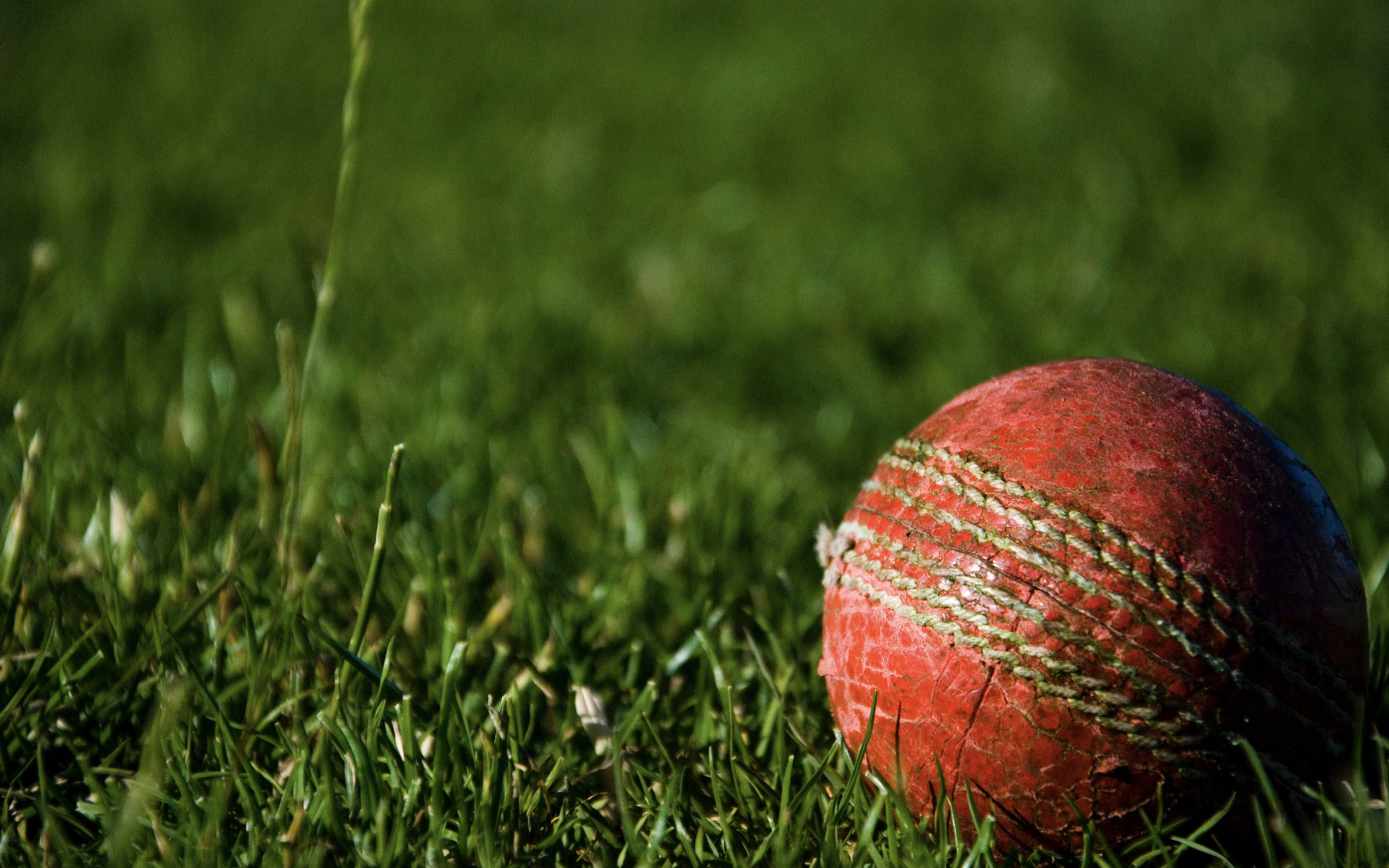 Experience Cricket in the West Indies