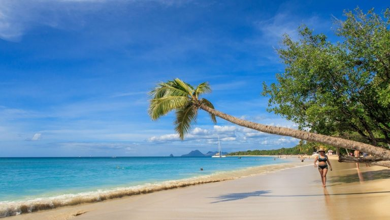 The 10 Best Things To Do in Martinique