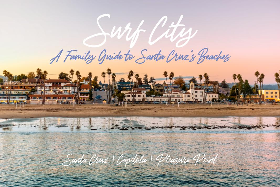 Surf City: A Family Guide to Santa Cruz's beaches
