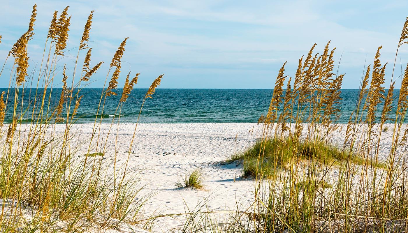 Kaiser Vacation Rentals   Orange Beach and Gulf Shores Vacation Rentals