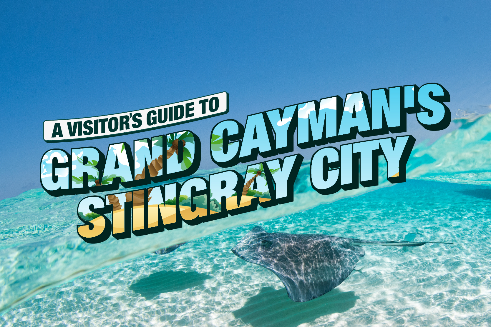 A Visitor's Guide to Grand Cayman's Stingray City