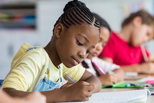 Alfabetização: usando diferentes gêneros textuais e metodologia ativa