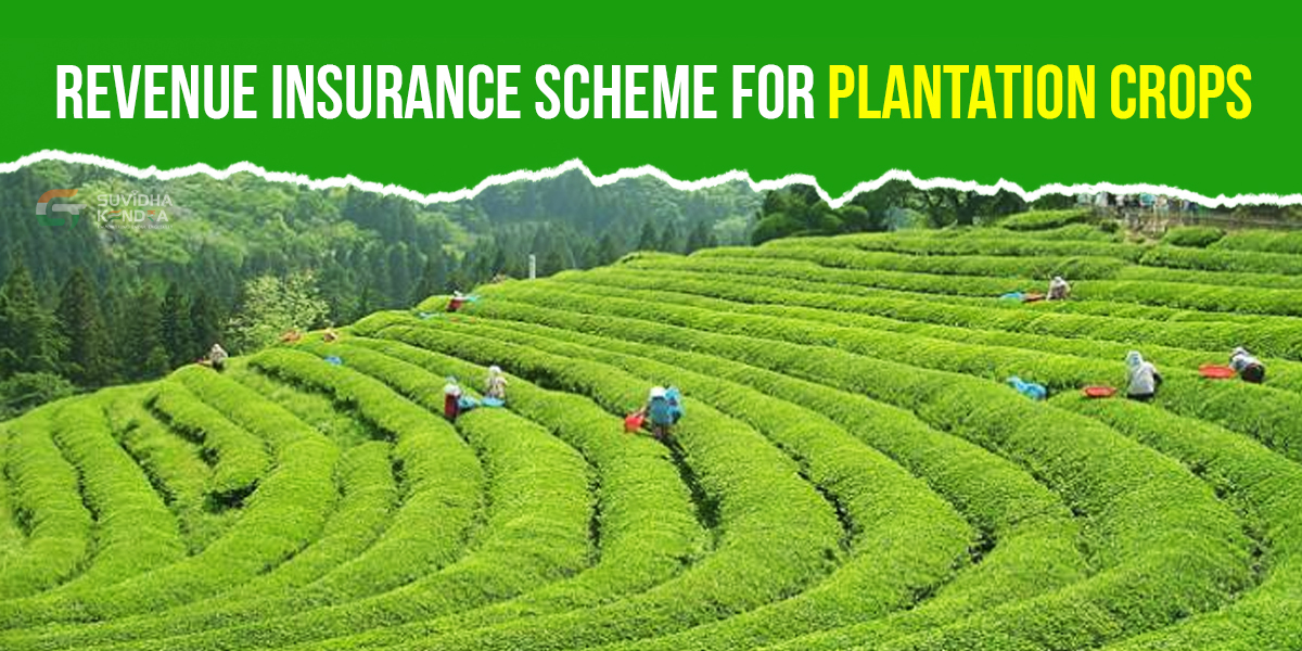 Revenue Insurance Scheme for Plantation Crops