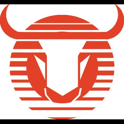 Club Toros Neza