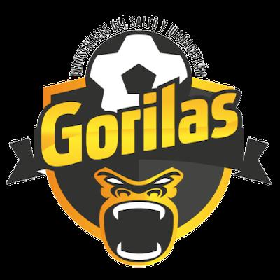 Club Gorilas de Juanacatlán