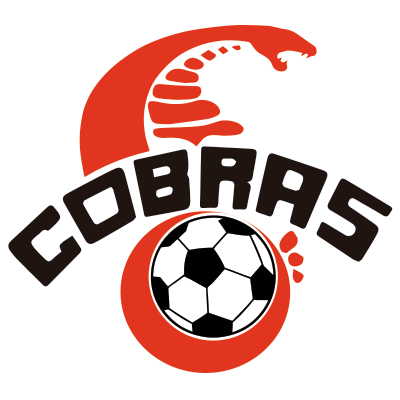 Club Cobras de Querétaro